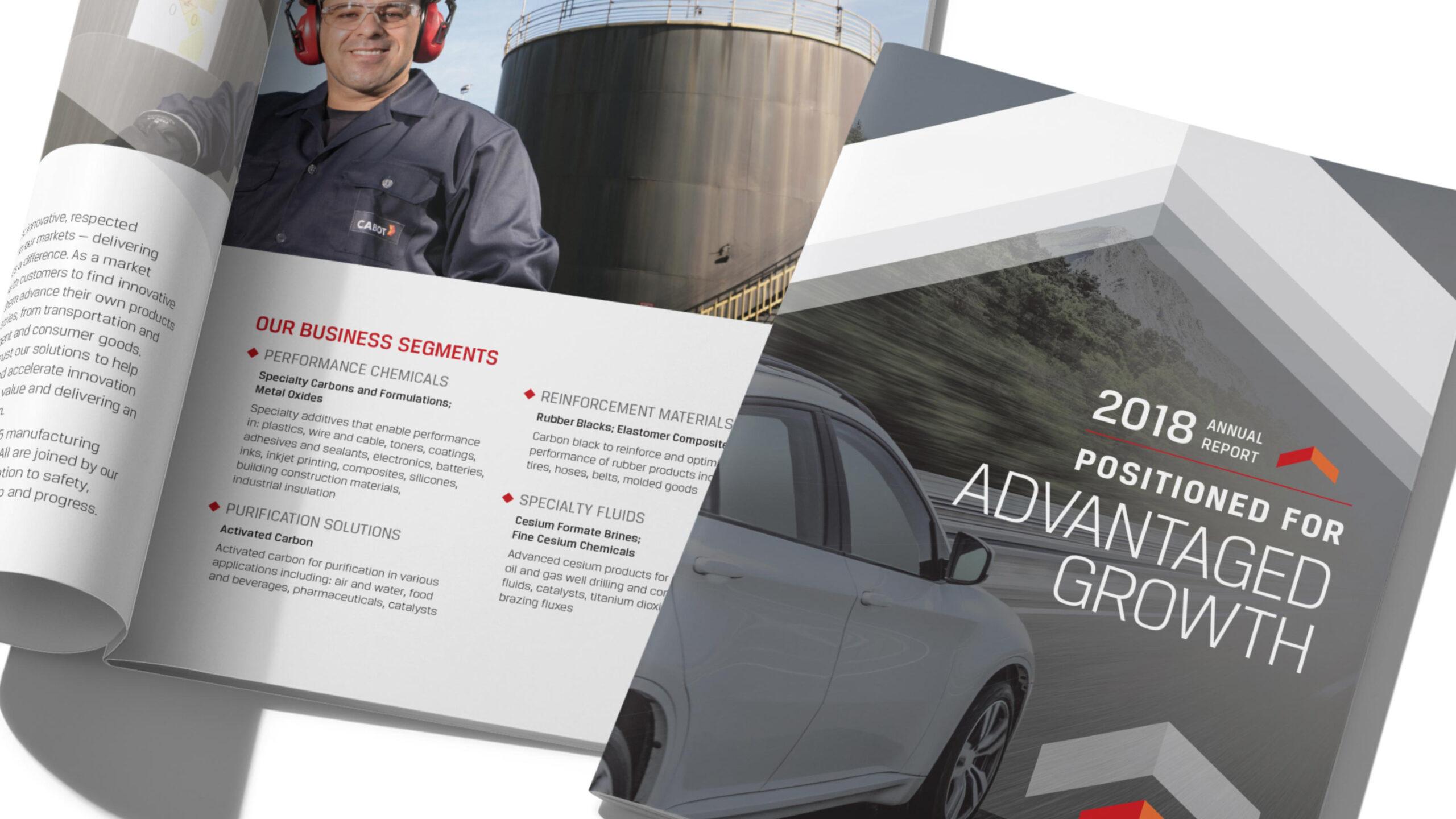 Corporate Annual Report cover