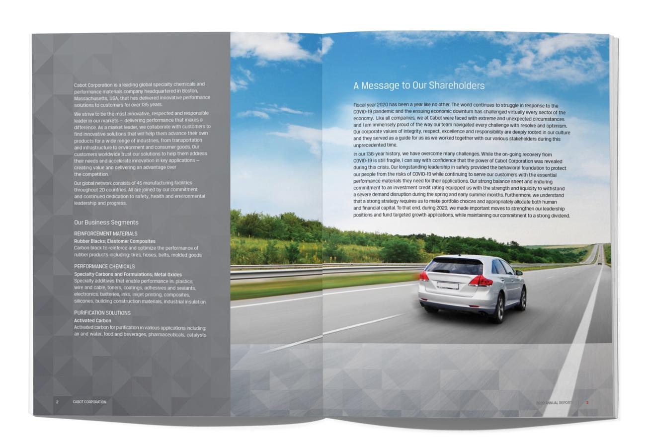 Corporate Annual Report